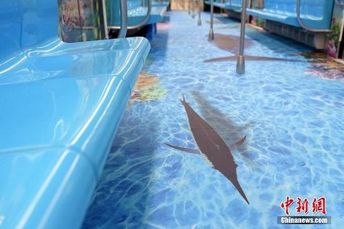 青岛地铁推出海底世界主题车厢
