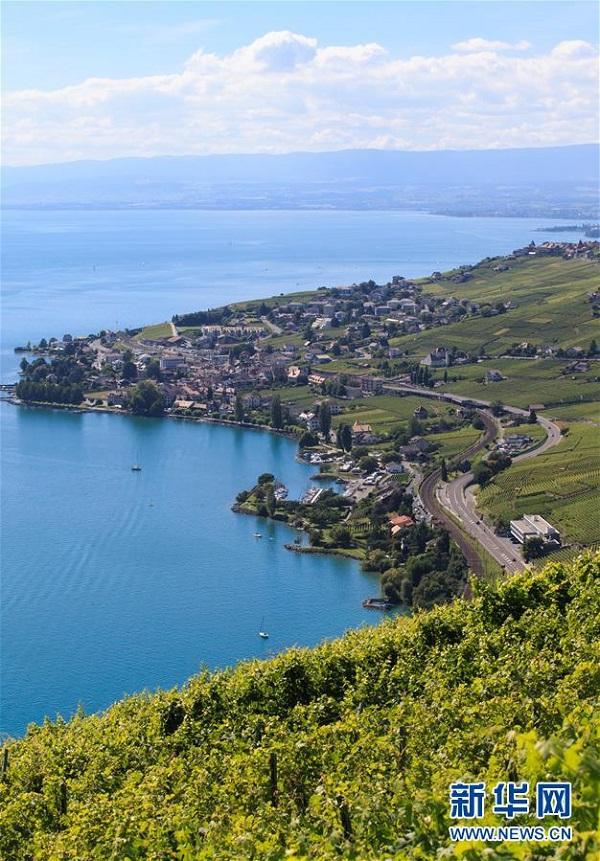 瑞士城市竖屏风景图片